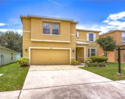 7103 Early Gold Lane, Riverview image