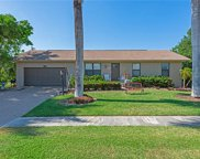 1432 Collingswood Ave, Marco Island image