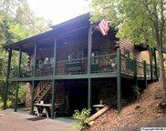 1640 County Road 137, Cedar Bluff image