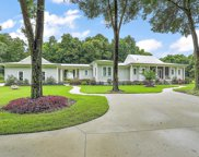 20201 Grass Roots Road, Groveland image