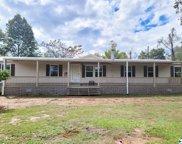 3801 Alabama Highway 157, Danville image