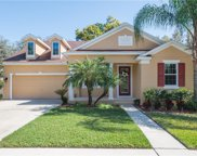 6936 Rocky Canyon Way, Tampa image