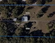 41120 County Road 25, Weirsdale image