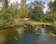 498 BRANSCOMB RD, Green Cove Springs image