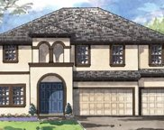 8776 Birchleaf Court, Land O' Lakes image