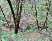 5  Clear Creek Rd, Placerville image