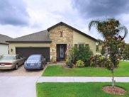 10670 Cardera Drive, Riverview image