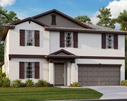 10226 Bright Crystal Avenue, Riverview image