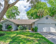 4035 N Waterbridge Circle, Port Orange image