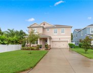 123 Philippe Grand Court, Safety Harbor image