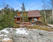 1059 Snyder Mountain Road, Evergreen image