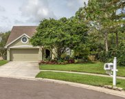 14520 Thornfield Court, Tampa image