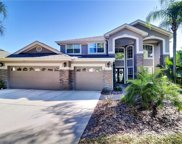 3520 Old Course Lane, Valrico image