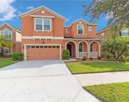 19338 Water Maple Drive, Tampa image