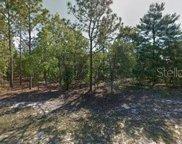 9365 N Pineview Way, Citrus Springs image