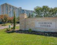 20 N Tower Road Unit #3F, Oak Brook image