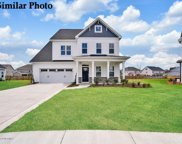 209 Bachmans Trail, Hampstead image