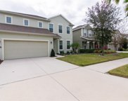 11255 Spring Point Circle, Riverview image