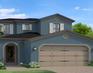 19571 Roseate Drive, Lutz image