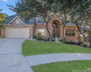 8506 Meaghan Mist, Helotes image