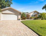1395 Treetop Drive, Palm Harbor image