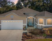 16975 Se 110th Court Road, Summerfield image