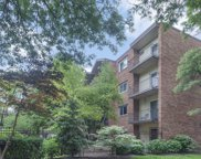 6960 North Bell Avenue Unit 308, Chicago image