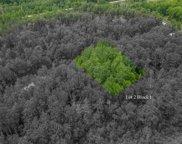 TBD 0120 Woodland Drive, Deer River image