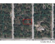 Sw Tree Top Road, Dunnellon image