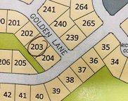 L203 Golden Ln, Waunakee image