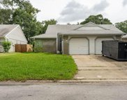 3259 Cloverplace Drive, Palm Harbor image