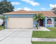 12908 Brant Tree Drive, Riverview image