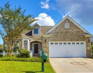 5702 White Tern Circle, North Myrtle Beach image