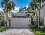 4520 Rolling Green Lane, Tampa image