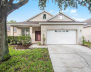15810 Stags Leap Drive, Lutz image