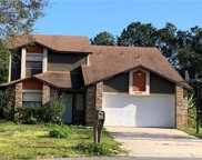 3256 Loblolly Court, Kissimmee image