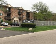 2245 Nichols Road Unit #E, Arlington Heights image