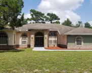 4228 Sweetbay Court, Spring Hill image