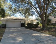 9645 Sw 192nd Court, Dunnellon image