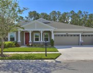 21930 Butterfly Kiss Drive, Land O' Lakes image
