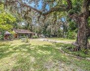 821 E Mcewen Avenue, Tampa image