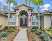 10110 Bell Creek Drive, Riverview image