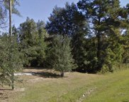 2151&2161 Pate Pond Road, Caryville image