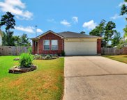 23311 Cape Cottage Court, Spring image