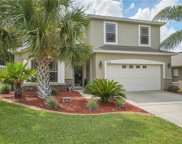8788 Fetterbush Court, Brooksville image