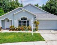 8839 Cypress Hammock Drive, Tampa image