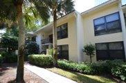 6774 Willow Wood Drive Unit #1101, Boca Raton image