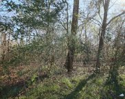 Lot 6 Woodlake Road, Huffman image