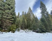 3-I-11 Mt Shasta Dr, Mccloud image