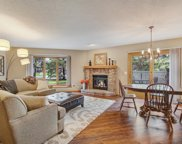 1009 Hill Court, Shoreview image